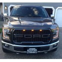 2015-2017 Ford F150 Raptor Style Glossy Grille with led amber lights